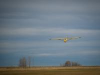 2014 Gliding-41