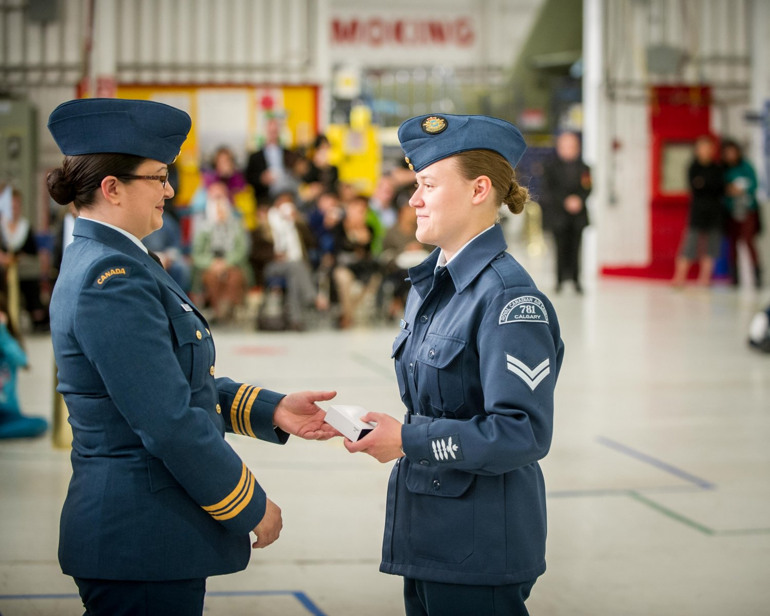 RobertPortrait ® 2015 781. Air Cadet-59